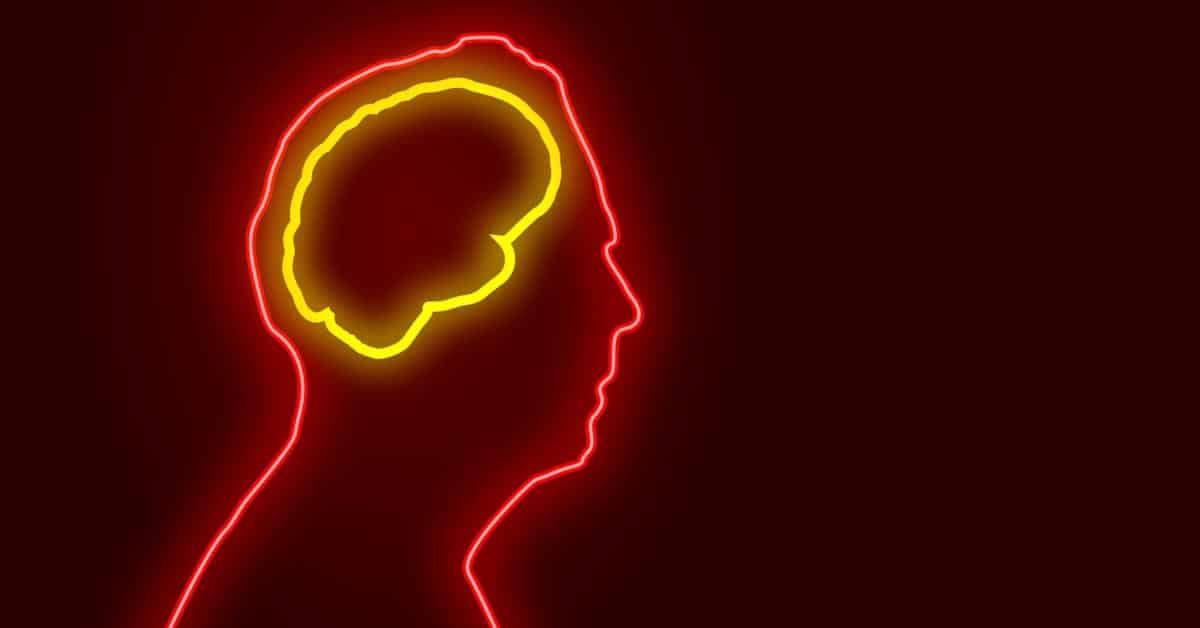 Tutkimus: Aivomme kutistuvat – tässä syy