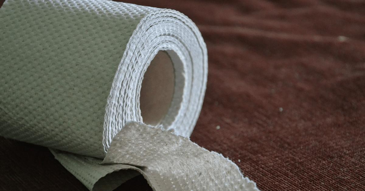 Näin voit kierrättää tyhjät vessapaperirullat – 17 vinkkiä
