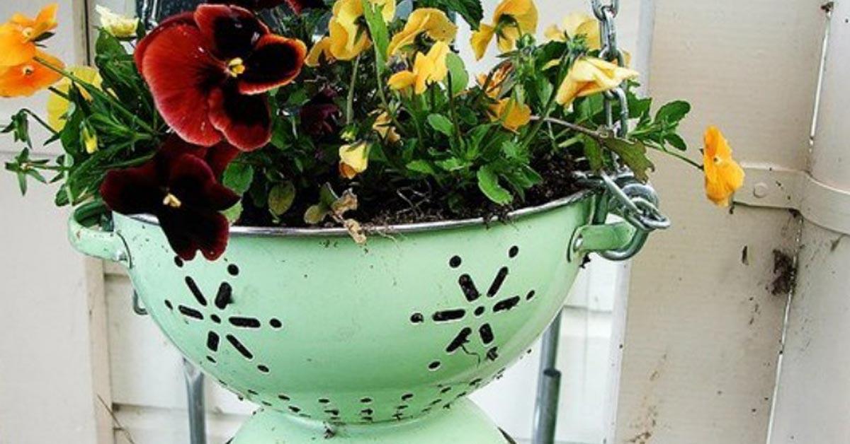 9 nerokasta tapaa istuttaa kukkia ilman kukkaruukkuja.