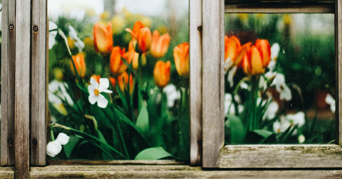 Perusta oma pikku puutarha – 10 vinkkiä