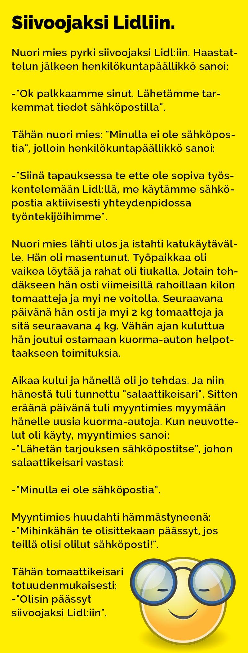 vitsit_siivoojaksi_lidliin_2