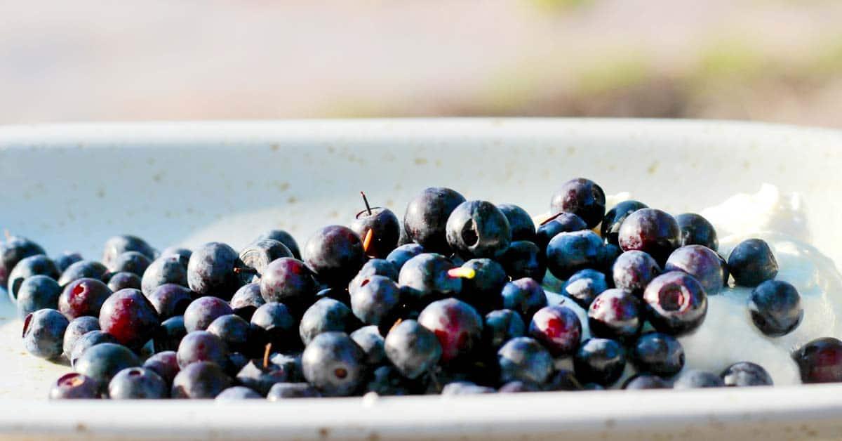 Nämä kaksi kotimaista ruokaa hidastavat ikääntymisen vaikutuksia tehokkaimmin