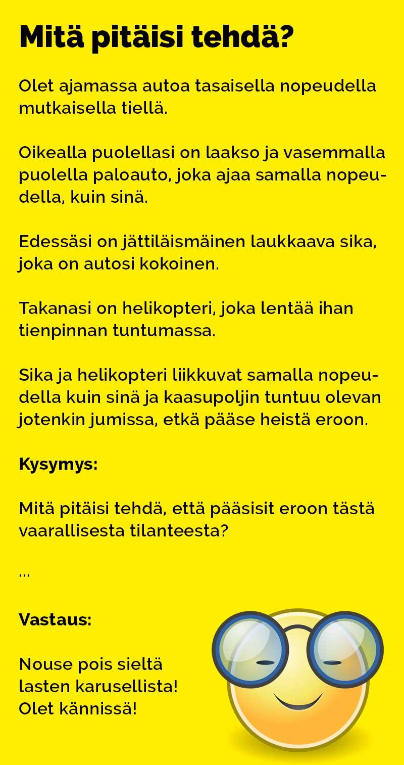 vitsit_mita_pitaisi_tehda_2