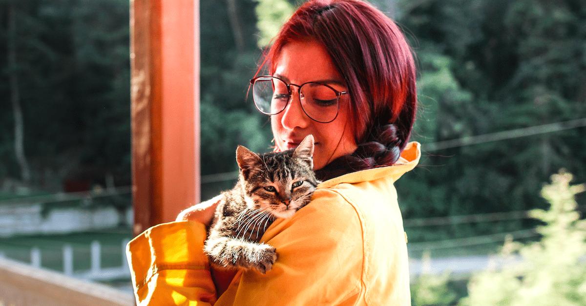 12 syytä, miksi kissanaisesta saa hyvän vaimon