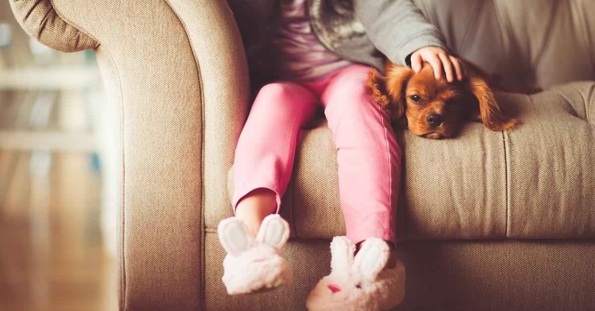 8 kuvaa jotka puhuttelevat jokaista koiran omistajaa