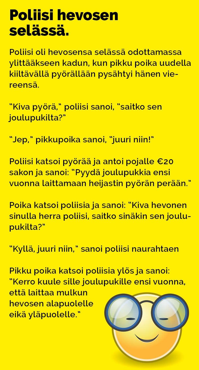 poliisi_hevosen_selassa_2