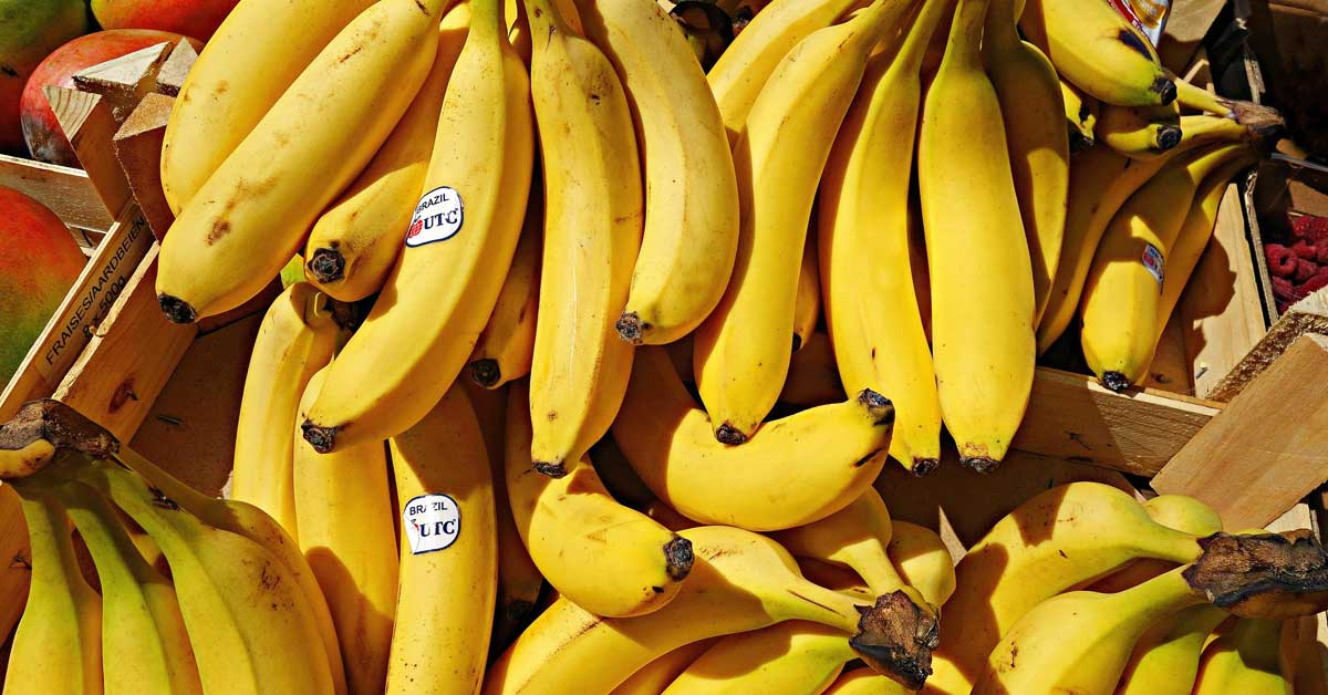 8 ruokaa, jotka ovat herkullisempia pakastettuna