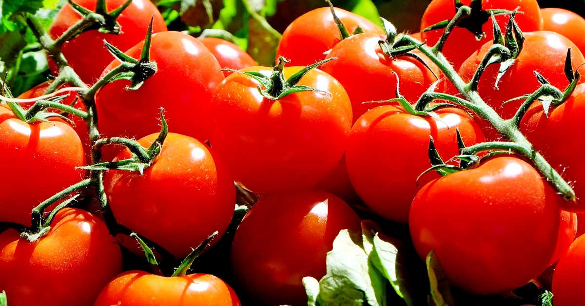 6 hedelmää ja vihannesta joita sinun ei tulisi pakastaa