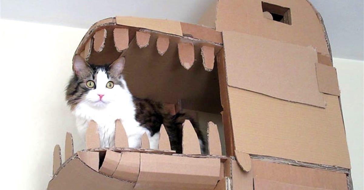 Mies rakensi kissalleen huikean liskolinnan pahvista
