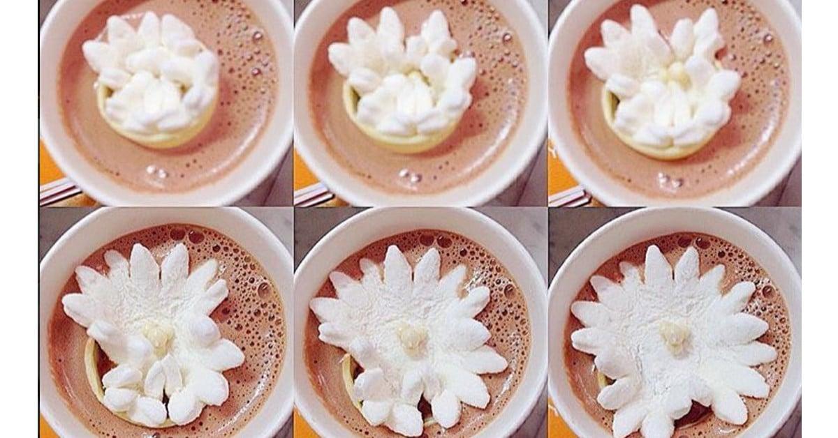 Oletko ennen nähnyt miten kaakao puhkeaa kukkaan? Katso video!