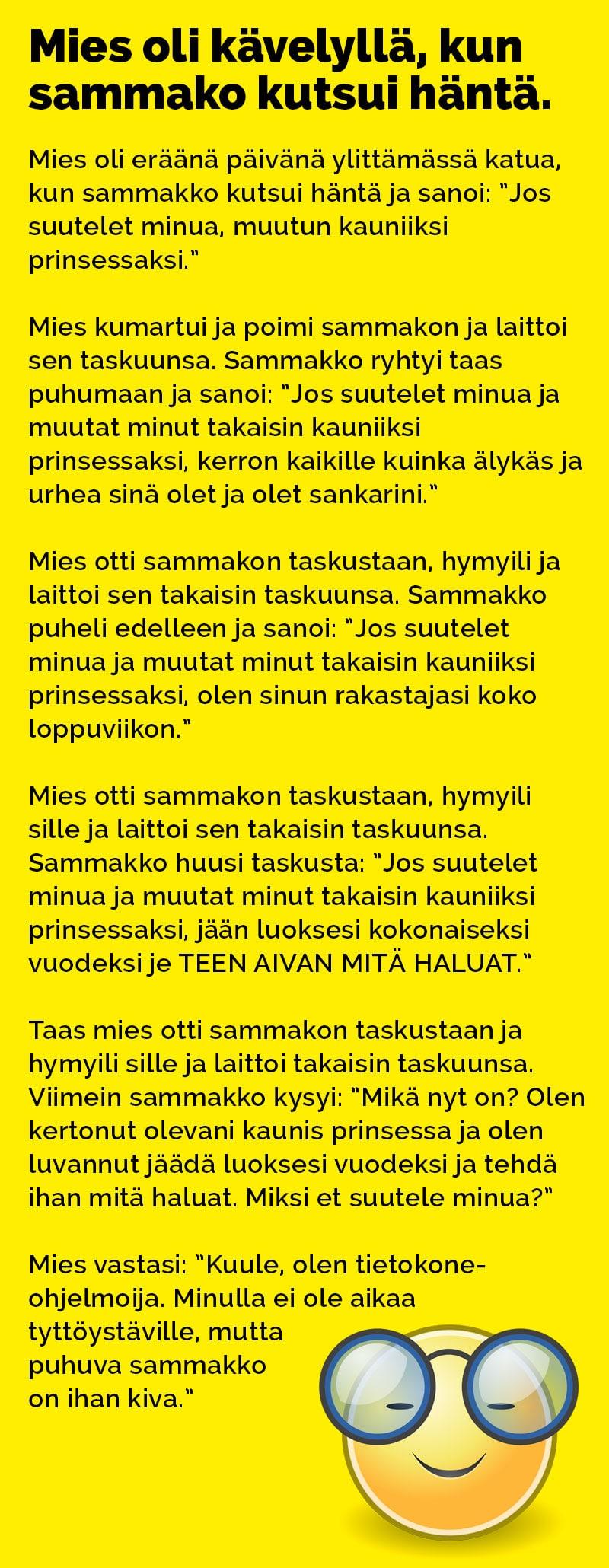 mies_kavelylla_kun_sammakko_kutsui_2