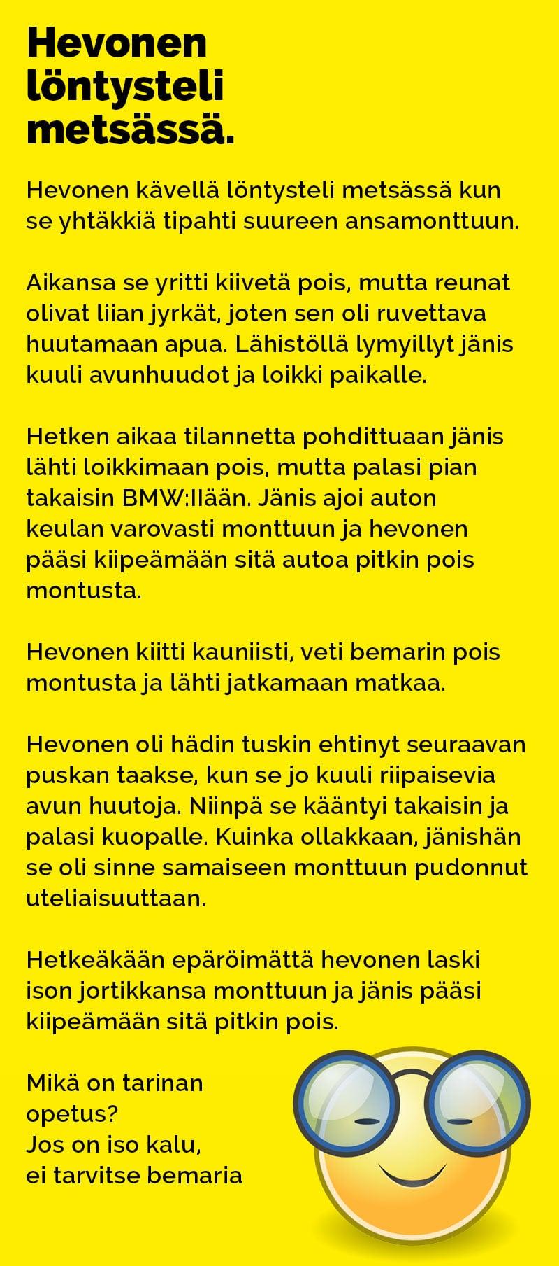 hevonen_lontysteli_metsassa_2