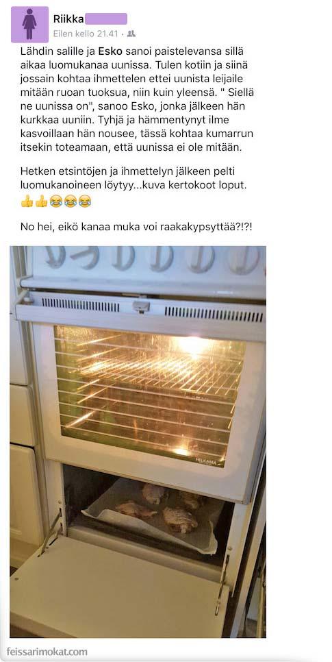 kanat_uunissa_2