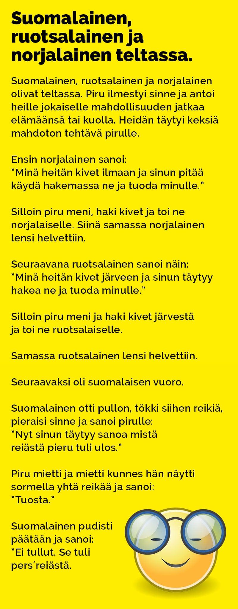 Suomalainen Ruotsalainen Ja Norjalainen Vitsit