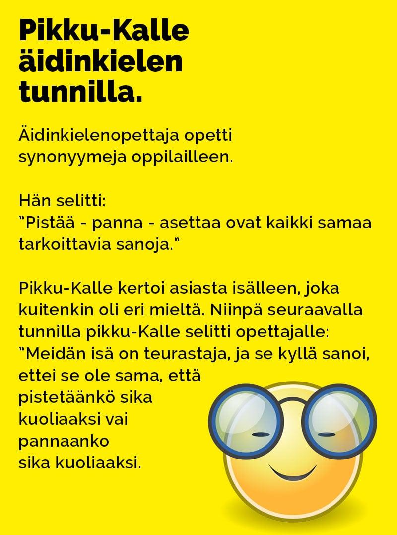 ilmainen suomalainen seksi aikuisviihde videot