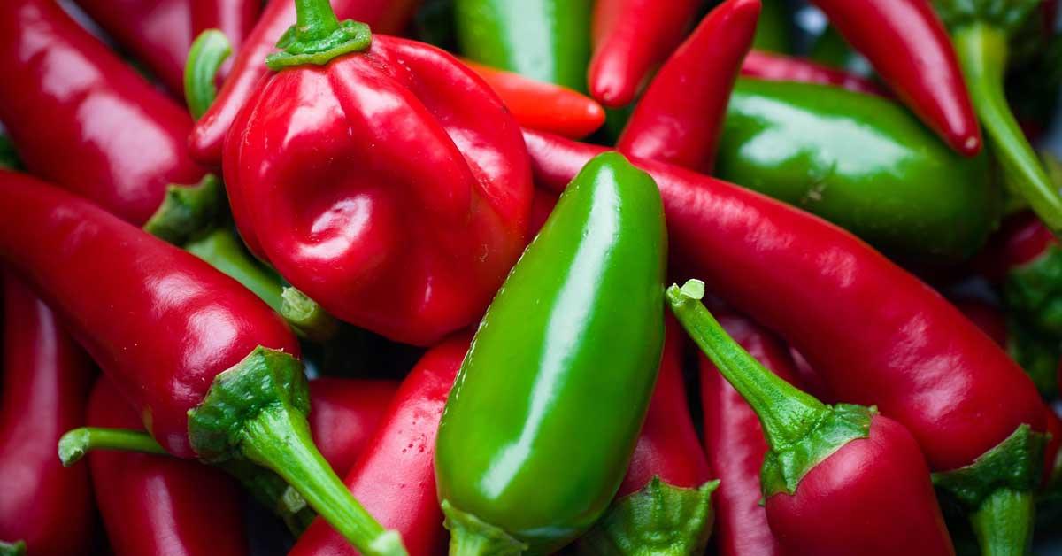 5 tulisten ja vahvasti maustettujen ruokien terveyshyötyä