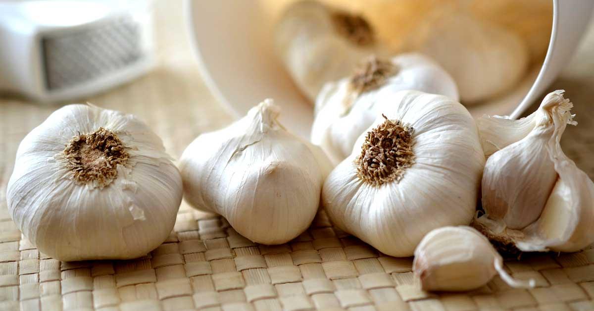10 syytä, miksi sinun tulisi syödä raakaa valkosipulia päivittäin