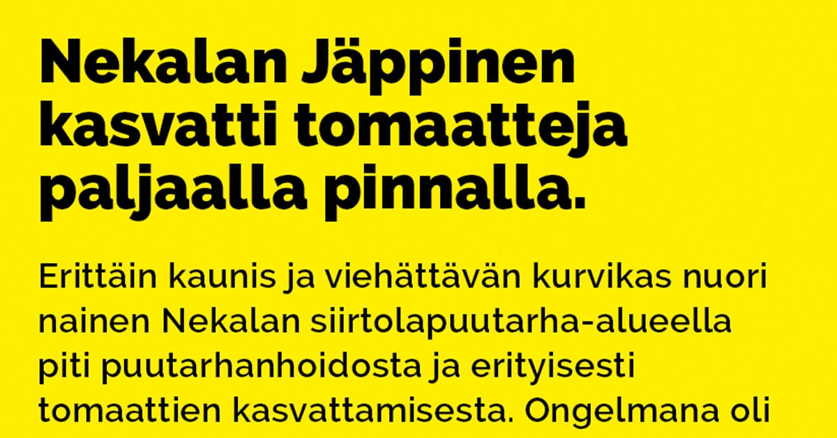 Vitsit: Nekalan Jäppinen kasvatti tomaatteja paljaalla pinnalla.