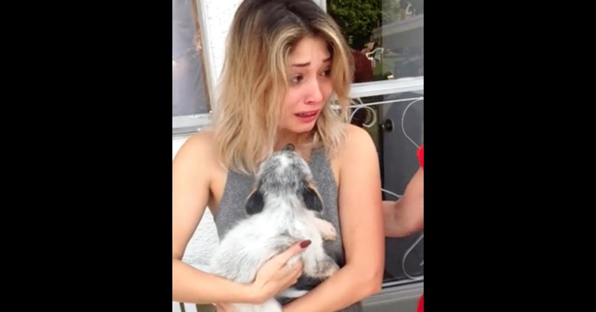 Tyttö saa koiranpennun – itkee onnesta