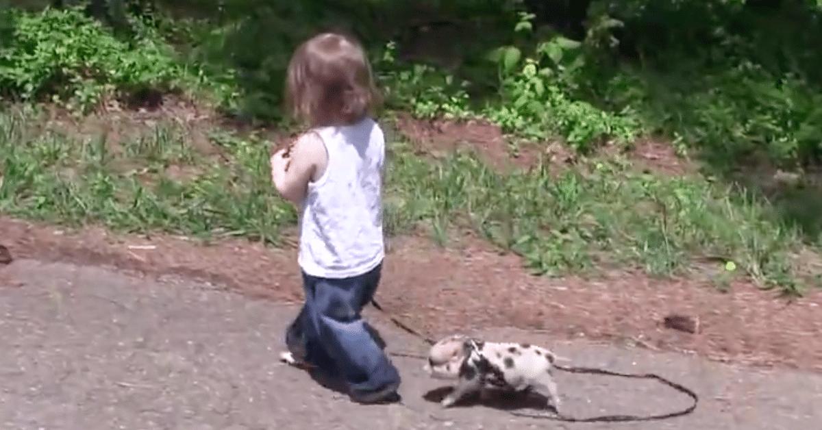 Minipossun ja pikkutytön erikoinen ystävyssuhde