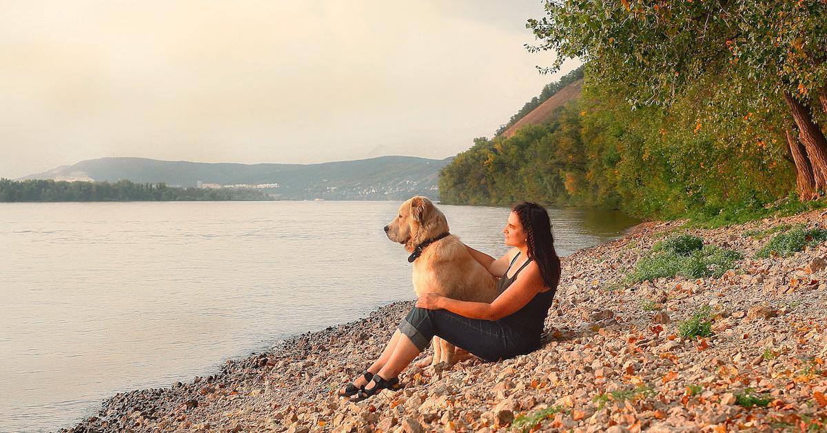 15 merkkiä siitä, että rakastat koiraasi enemmän kuin ihmisiä