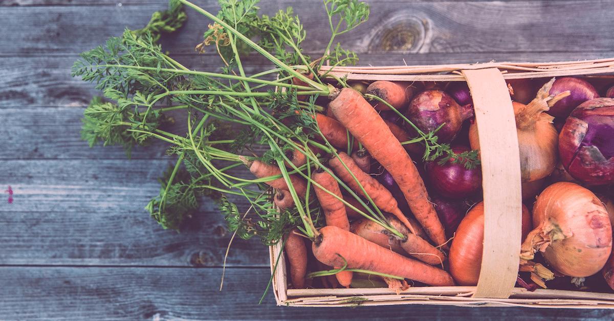 Miksi porkkanoita kannattaa syödä? – 10 syytä