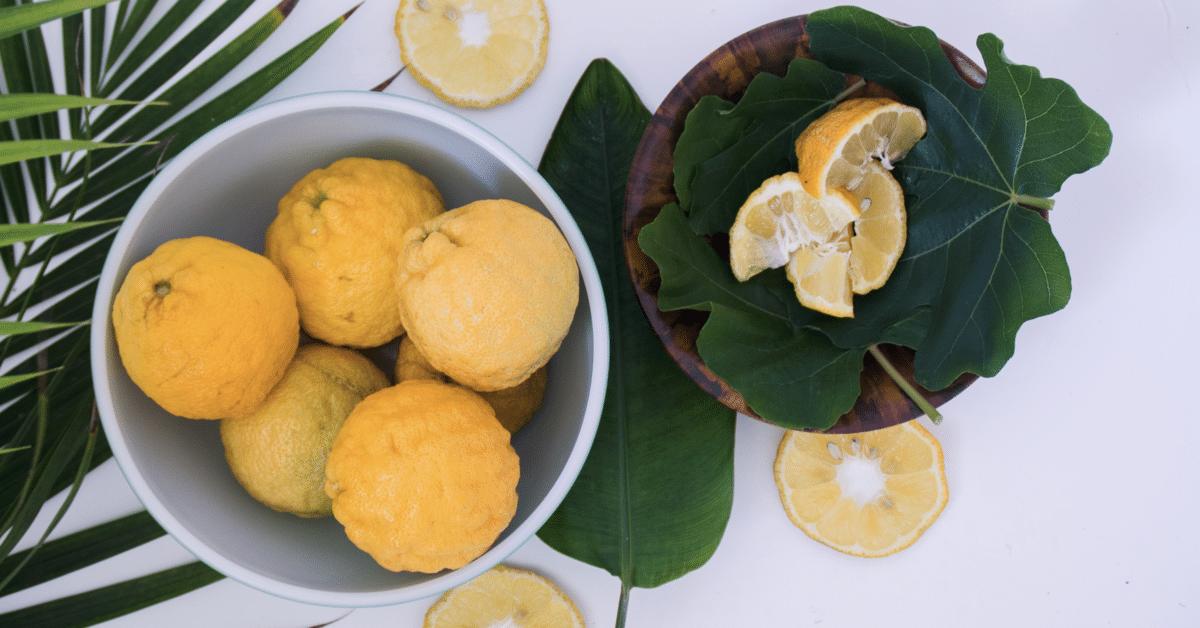16 terveellistä syytä juoda lämmintä sitruunamehua