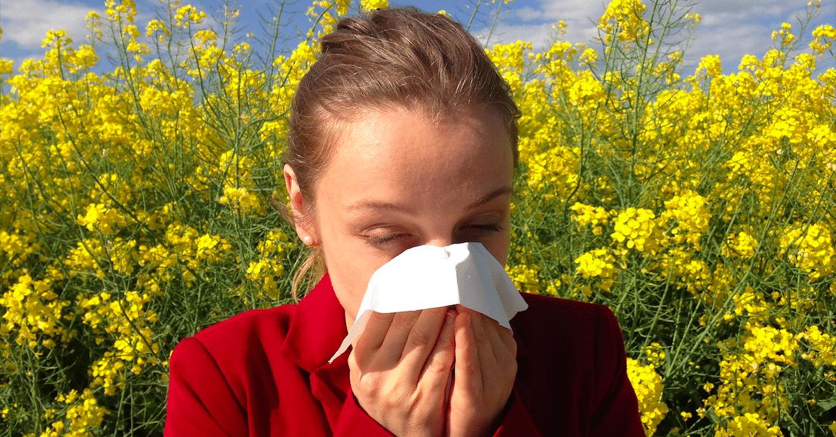7 Yleistä allergeenia, jotka jokaisen tulisi tuntea