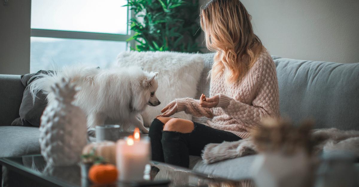 Nämä 9 asiaa tarvitset kotiisi, jos haluat olla onnellinen