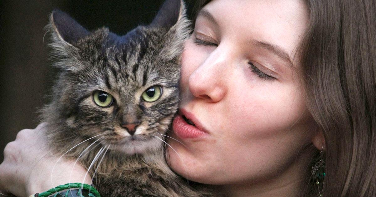 Näin kissat suhtautuvat ihmisiin suhteessa ruokaan, väittävät tutkijat