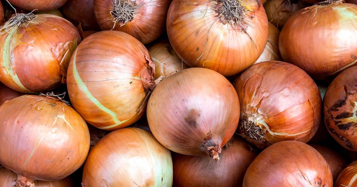 13 Uskomatonta sipulien terveysvaikutusta