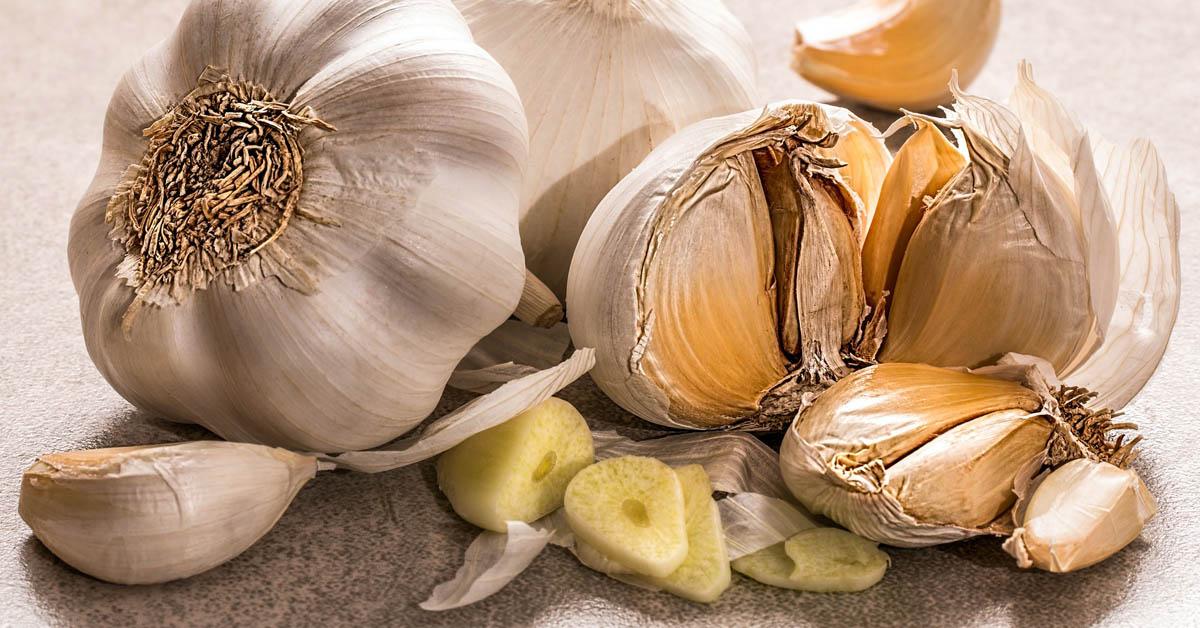 11 hyvää syytä syödä valkosipulia säännöllisesti